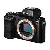 Лучшие беззеркальные фотоаппараты по мнению профессионалов